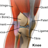 Acupuncture Reduces Pain and Stiffness of Knee Osteoarthritis